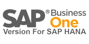 SAP Business One Version For HANA Software eCommerce Integration