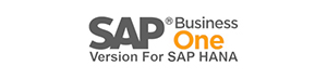 SAP Business One Version For SAP HANA Software eCommerce Integration