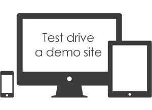 Test drive a demo website